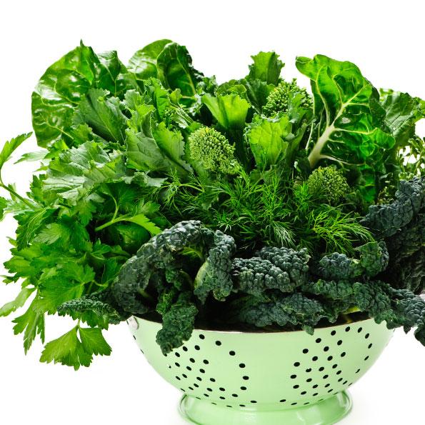 vegetais -greens-image014-dark-leafy-green-clipart_595-595